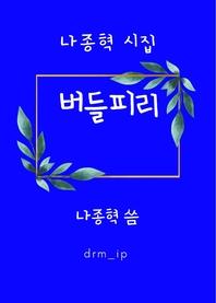 버들피리-나종혁 시집